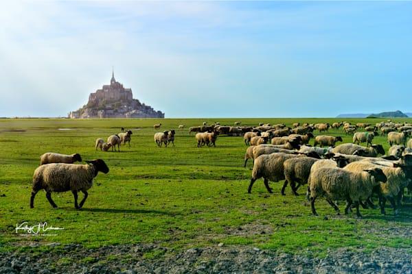 Mont St Michel 4