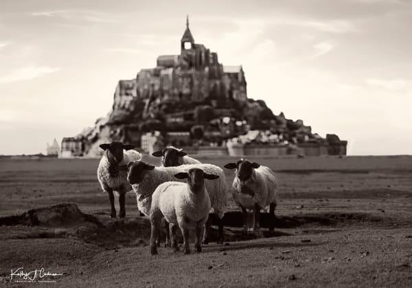 Mont St Michel 5 Photography Art | Images2Impact