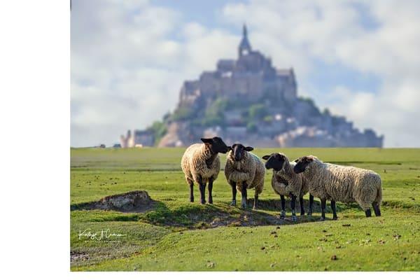 Mont St Michel 6 Photography Art | Images2Impact