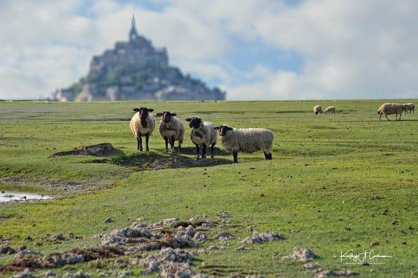 Mont St Michel 7 Photography Art | Images2Impact