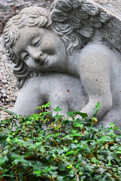 """Resting Angel"""