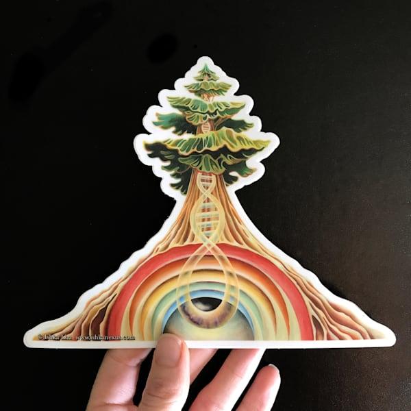 Rainbow Tree - Die Cut Art Stickers   Ishka Lha