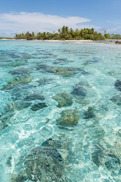 Kauehi Atoll Tropical Island and Coral Heads, French Polynesia