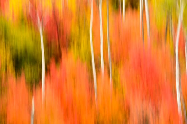 Impressionistic Photographs - Motion Blur The Wonder Of It All Act 2 Palisades Idaho - Fine Art Prints on Metal, Canvas, Paper & More By Kevin Odette Photography