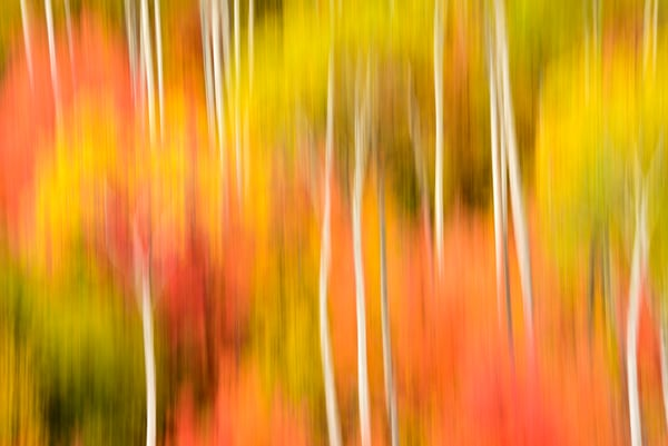 Impressionistic Photographs - Motion Blur The Wonder Of It All Act 1 Palisades Idaho The Third of Three - Fine Art Prints on Metal, Canvas, Paper & More By Kevin Odette Photography