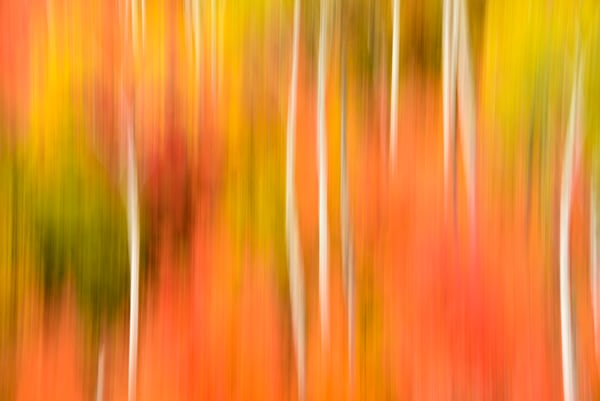 Impressionistic Photographs - Motion Blur The Wonder Of It All Act 1 Palisades Idaho The First of Three - Fine Art Prints on Metal, Canvas, Paper & More By Kevin Odette Photography