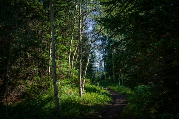 Colorado, Landscape, Photography, Conundrum Trail, Summer, Rocky Mountains, Aspen Snowmass Wilderness