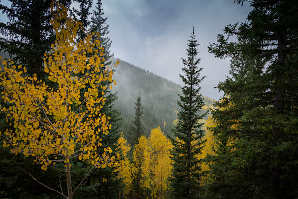 santa fe, photography, new mexico, landscape, autumn, aspens, southwest, sangre de christo mountains