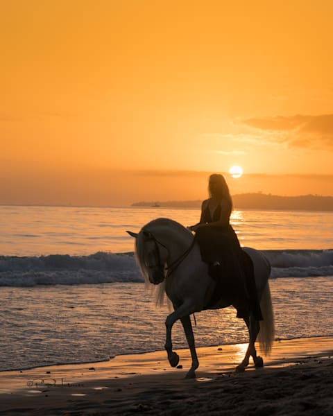 Sunset Ride On The Beach Photography Art | HoofPrintsFineArt