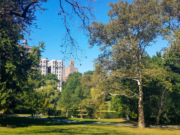The Pool In Central Park Photograph For Sale As Fine Art
