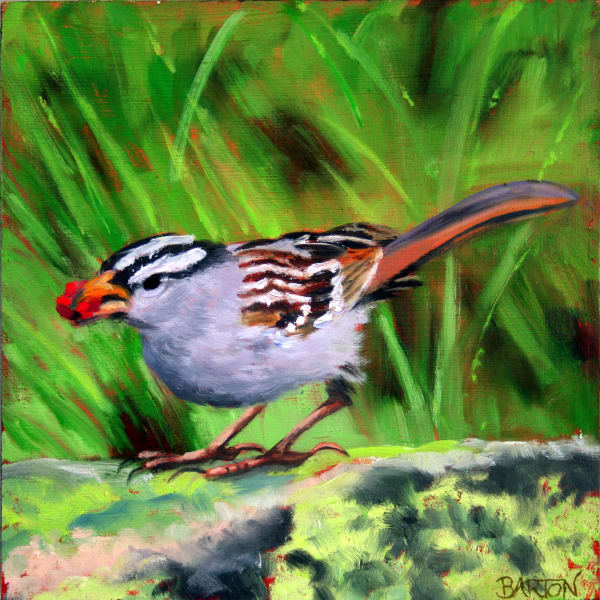 sparrow, berry, woods