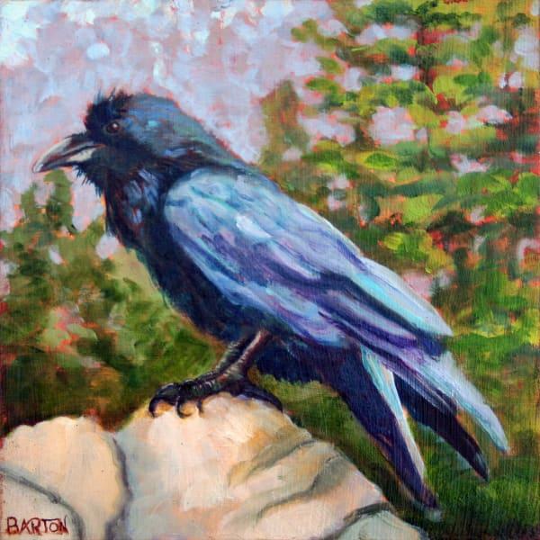 raven, rock, sitting, Yosemite