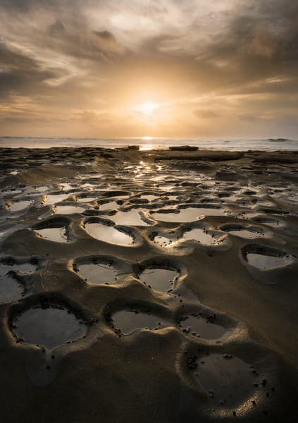 Earthly Tide Pools