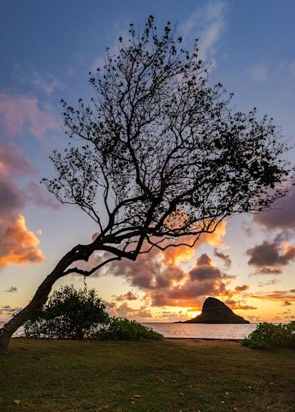 Hawaii Photography | Kualoa Sunrise by Peter Tang