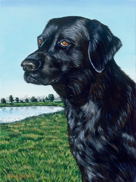 Original painting of a black labrador retriever for sale as art prints.