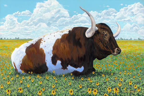 Painting of a longhorn laying in a field, for sale as art prints.