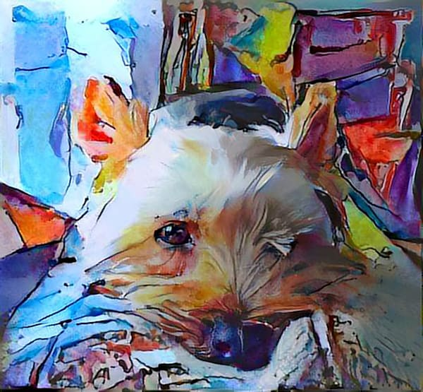 Yorkie stained glass 3