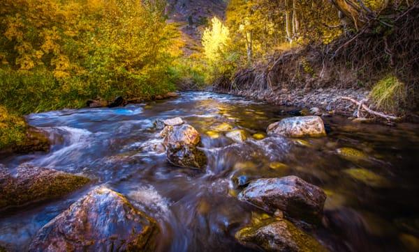 Gold Rush on McGee Creek