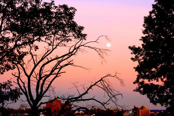 moon-skyline