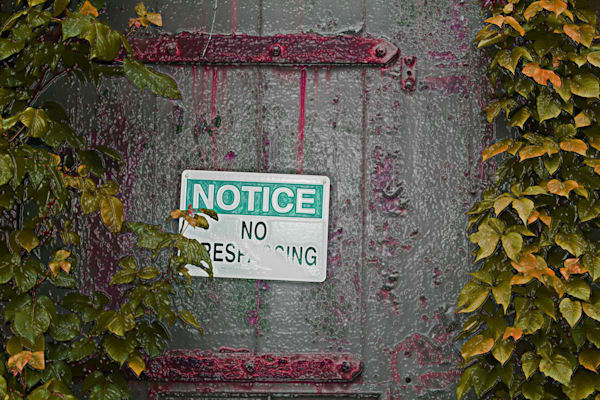 No Trespassing and Vines