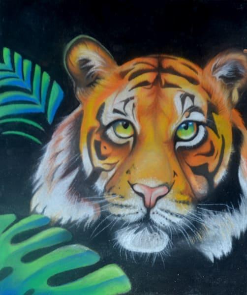 Tiger (2017)