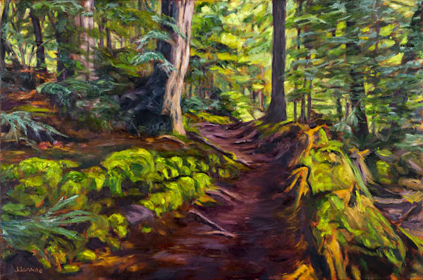 The Winding Path in Limberlost Forest and Wildlife Reserve, prints of a painting by Janet Jardine