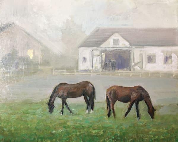 Field Foals in Fog