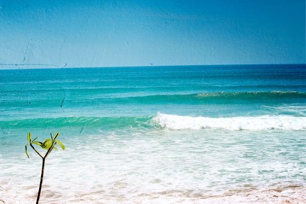 Feels Like Paradise