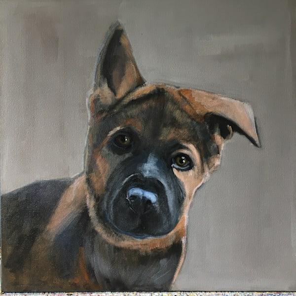 lesli devito custom pet portrait 16 x 16