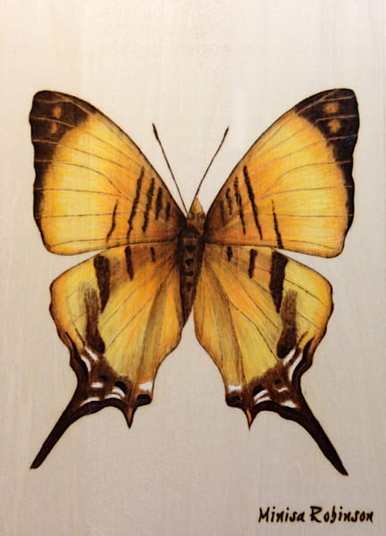 Yellow Butterfly Print Art | Minisa Pyrography