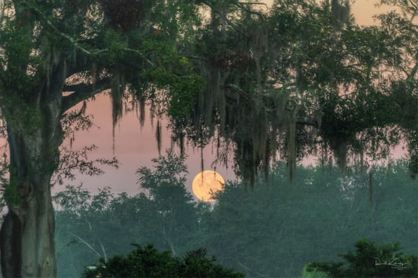 Saturday Morning Moon Photographic Art