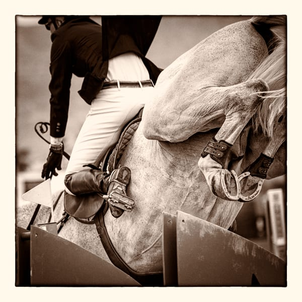 High Heels, sepia - HITS Desert Circuit, Thermal, California 2014