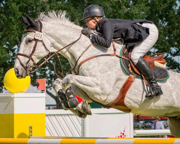 Show Jumper - Socrates de Midos #1 - Spruce Meadows, Calgary, Alberta, Canada 2012