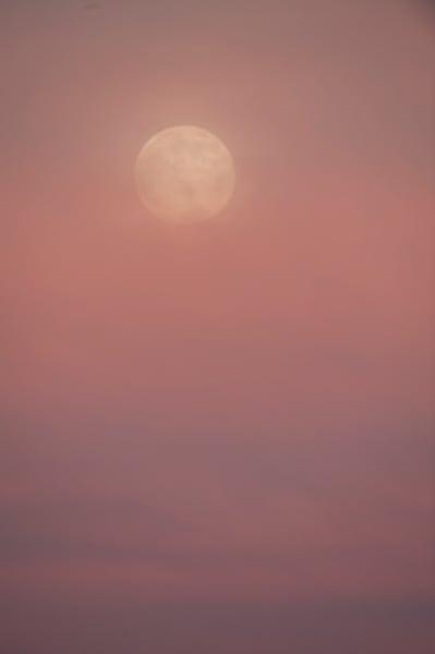 Full Moon At Sunrise    Photography Art | Carol Brooks Parker Fine Art Photography