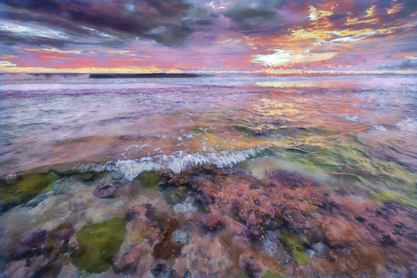Fringing Reef #4 Wavelet Photography Art | Carol Brooks Parker Fine Art Photography