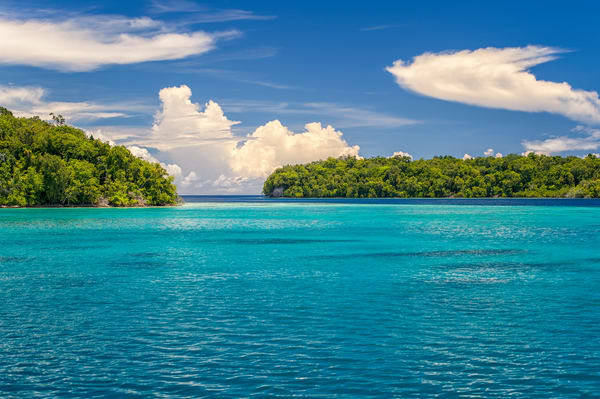 Tropical Blues - Marovo Lagoon, Solomon Islands 2012