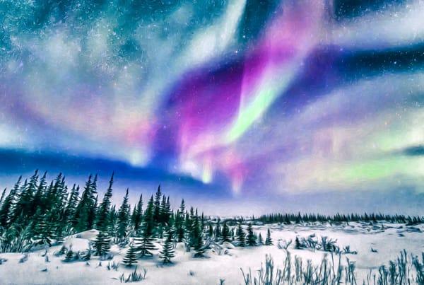 Dance Of The Aurora    Photography Art | Carol Brooks Parker Fine Art Photography