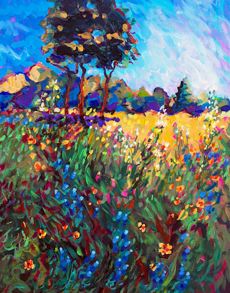 Central Texas Spring Pasture  Art | Charles Wallis