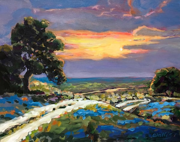Hill Country Sunset Vista