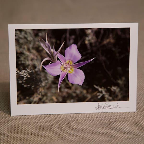 Sagebrush Mariposa Lily Notecard