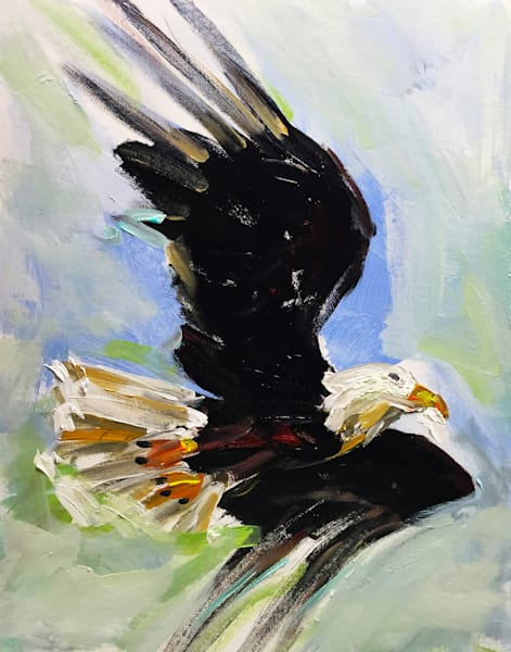 Bald Eagle 300 Art | Charles Wallis