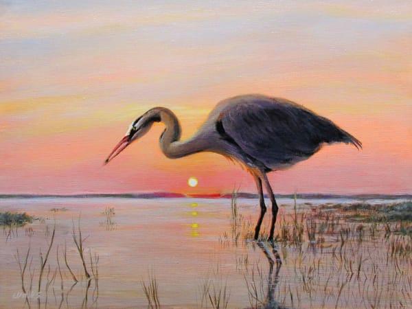 Great Blue Heron At Dawn Art | Charles Wallis