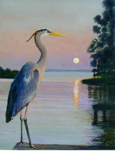 Great Blue Heron Lake Livingston