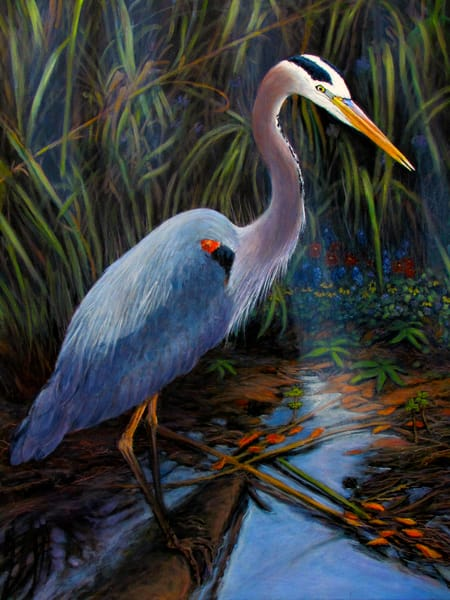 Great Blue Heron 30 X 40 Art | Charles Wallis