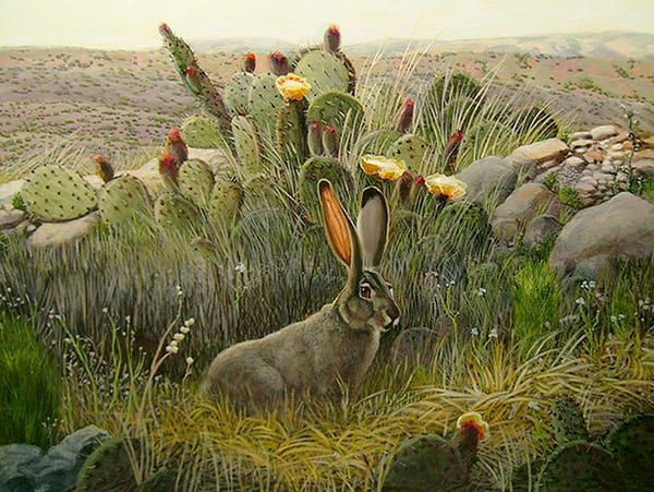 Jack Rabbit High Desert1 Art | Charles Wallis