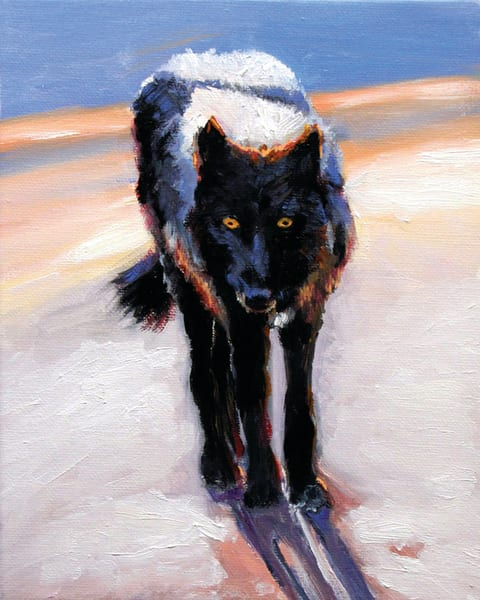 Black Wolf Snow Moon Shadow Orig Art | Charles Wallis