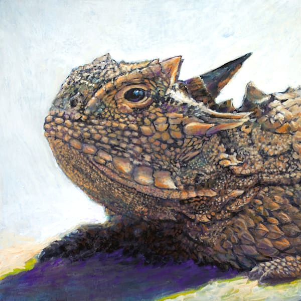 Texas Horned Lizard20x20 72 Art | Charles Wallis