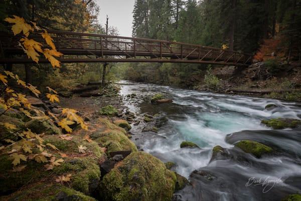 Umpqua River Bridge in Autumn Photo by Barb Gonzalez Photography