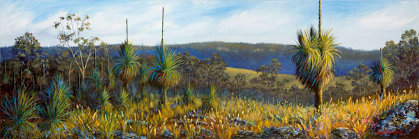 Bunya Mountains Grass Trees