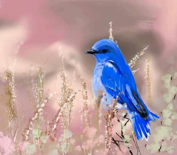 Bluebird Art | Dave Fox Studios